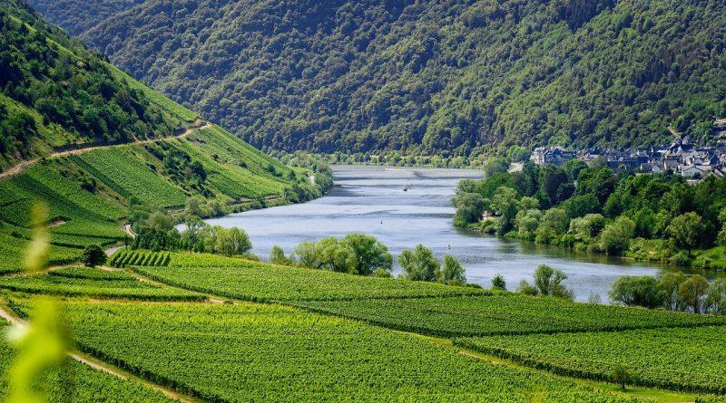 Vinresor till Georgien